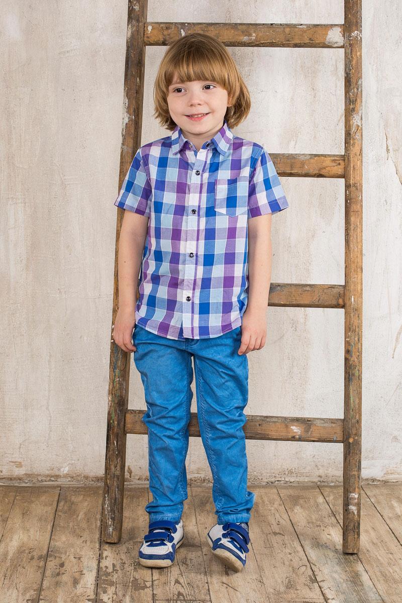 Брюки для мальчика. 196376196376Модные брюки для мальчика Sweet Berry идеально подойдут для отдыха и прогулок. Изготовленные из эластичного хлопка, они мягкие и приятные на ощупь, позволяют коже дышать. Модель на талии застегивается на пластиковую пуговицу и имеет ширинку на застежке-молнии, а также шлевки для ремня. С внутренней стороны пояс регулируется скрытой резинкой на пуговицах. Спереди расположены два втачных кармана, сзади - два прорезных на застежках-пуговицах. Изделие дополнено на поясе нашивкой. Современный дизайн и расцветка делают эти брюки стильным предметом детской одежды. Обладатель таких брюк всегда будет в центре внимания!