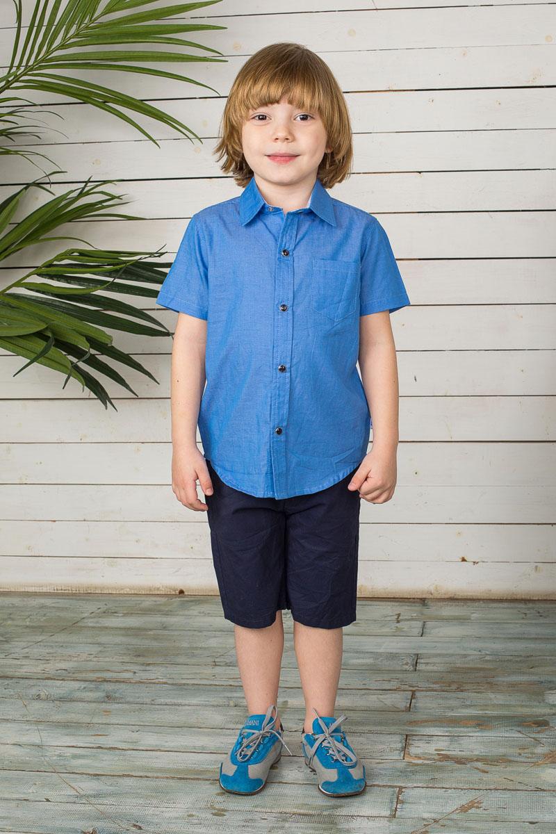 Рубашка для мальчика. 196398196398Стильная рубашка для мальчика Sweet Berry идеально подойдет вашему маленькому мужчине. Изготовленная из натурального хлопка, она мягкая и приятная на ощупь, не сковывает движения и позволяет коже дышать, обеспечивая наибольший комфорт. Рубашка с отложным воротником и короткими рукавами застегивается на кнопки по всей длине. На груди расположен накладной карман. Дизайн и расцветка делают эту рубашку модным предметом детского гардероба, в ней ребенку будет комфортно и удобно.