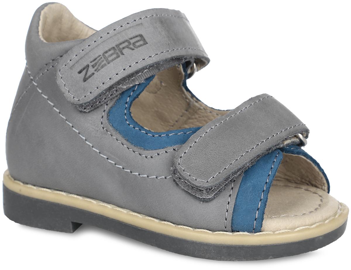 Сандалии для мальчика. 10591-1010591-10Прелестные сандалии от Зебра очаруют вашего малыша с первого взгляда! Модель выполнена из натуральной высококачественной кожи. Полужесткий закрытый задник и ремешки на застежках-липучках обеспечивают оптимальную посадку обуви на ноге, не давая ей смещаться из стороны в сторону и назад. Стелька из натуральной кожи дополнена супинатором с перфорацией, который обеспечивает правильное положение ноги ребенка при ходьбе, предотвращает плоскостопие. На подошве размещена система амортизаторов, уменьшающих травматизм суставов при ходьбе и беге. Специальная ортопедическая подошва обеспечивает достаточное, но не чрезмерное сгибание. Ортопедический каблук Томаса (Thomas Heel) укрепляет подошву под средней частью стопы и препятствует ее заваливанию внутрь. Стильные сандалии поднимут настроение вам и вашему ребенку!