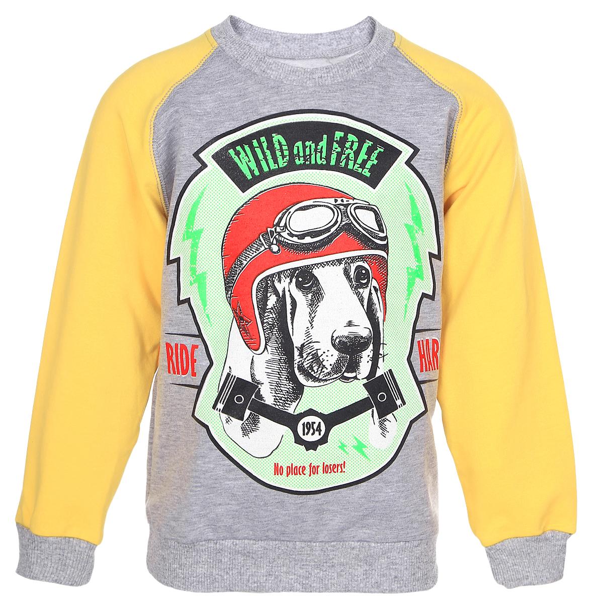 D202MS-14Свитшот для мальчика M&D с длинными рукавами-реглан и круглым вырезом горловины выполнен из полиэстера с добавлением хлопка . Изделие украшено крупным принтом с изображением собаки в шлеме с очками и дополнено надписью Wild and Free. Ride Hard..