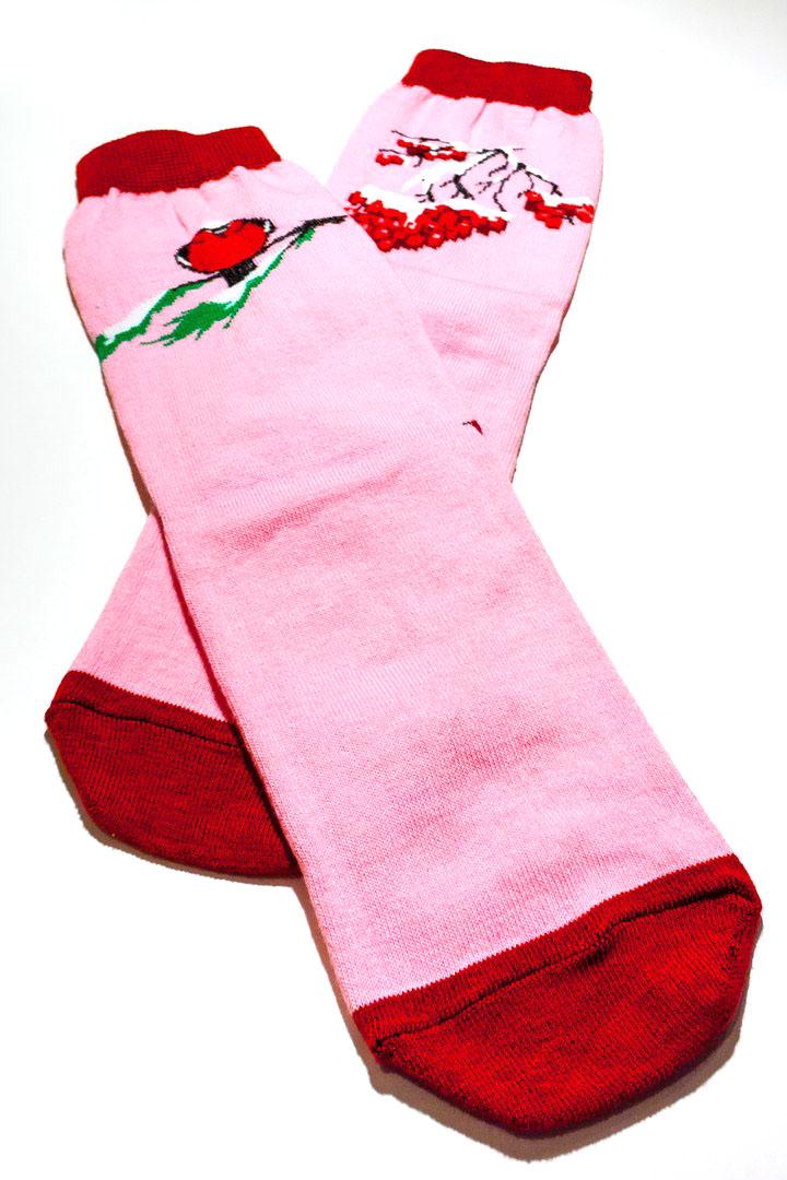 Носкиfs5123Махровые женский носки Big Bang Socks Снегирь и рябина изготовлены из высококачественного хлопка с добавлением полиамидных и эластановых волокон, которые обеспечивают великолепную посадку. Удобная резинка идеально облегает ногу и не пережимает сосуды, а удлиненный паголенок придает более эстетичный вид. Носки оформлены красочным принтом.