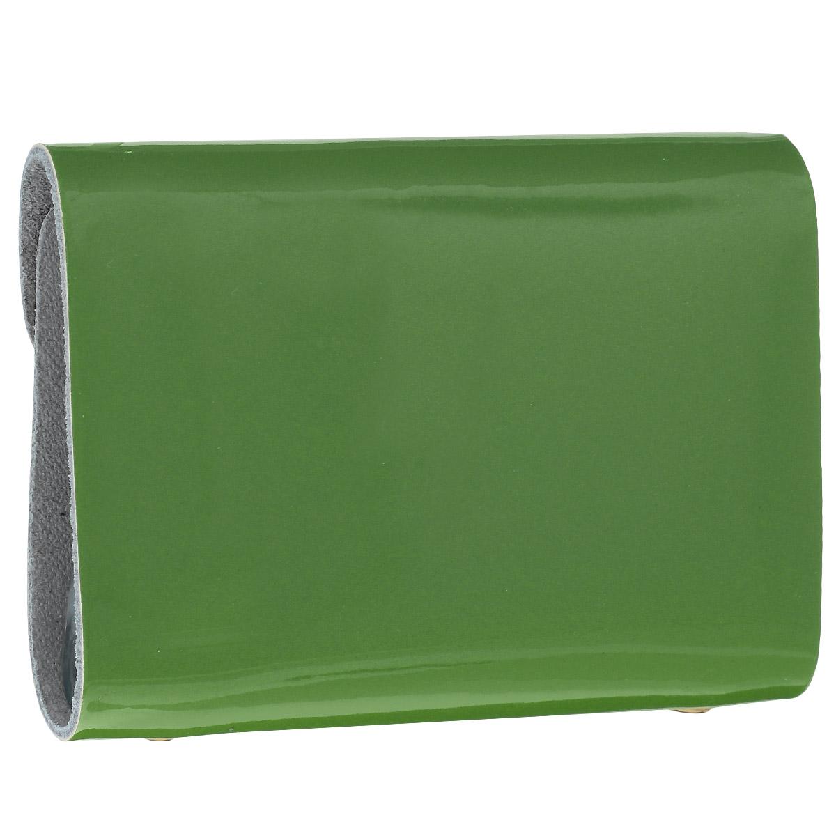 "Визитница ""Cheribags"", цвет: зелёный. V-0494-14 ( V-0494-14 )"