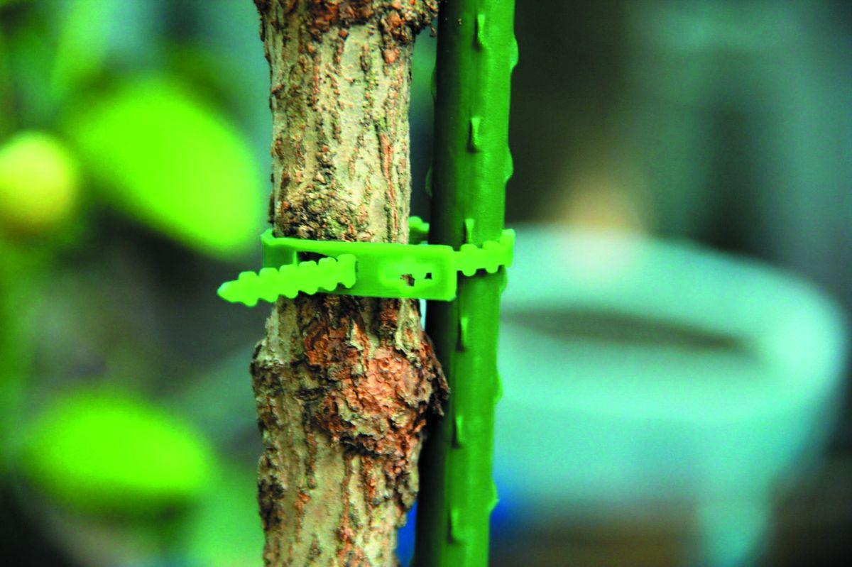 """Подвязка регулируемая Green Apple """"GTT-25"""", 17 см, 100 шт"""