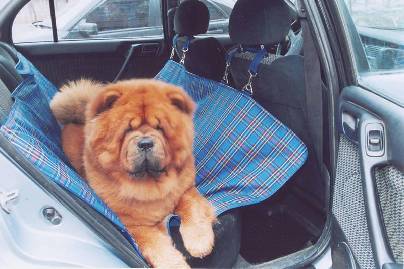 """Автогамак для собак """"Titbit"""", цвет: синий, 142 см х 140 см"""