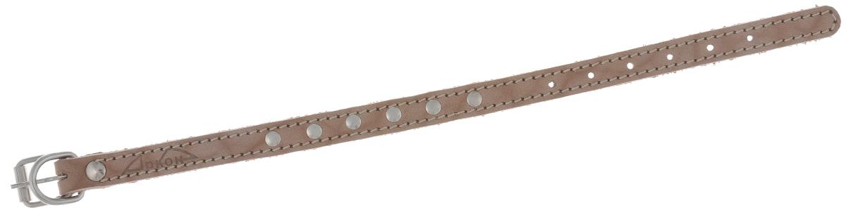 """Ошейник для собак Аркон """"Стандарт"""", цвет: светло-коричневый, ширина 1,4 см, длина 31,5 см. о14"""