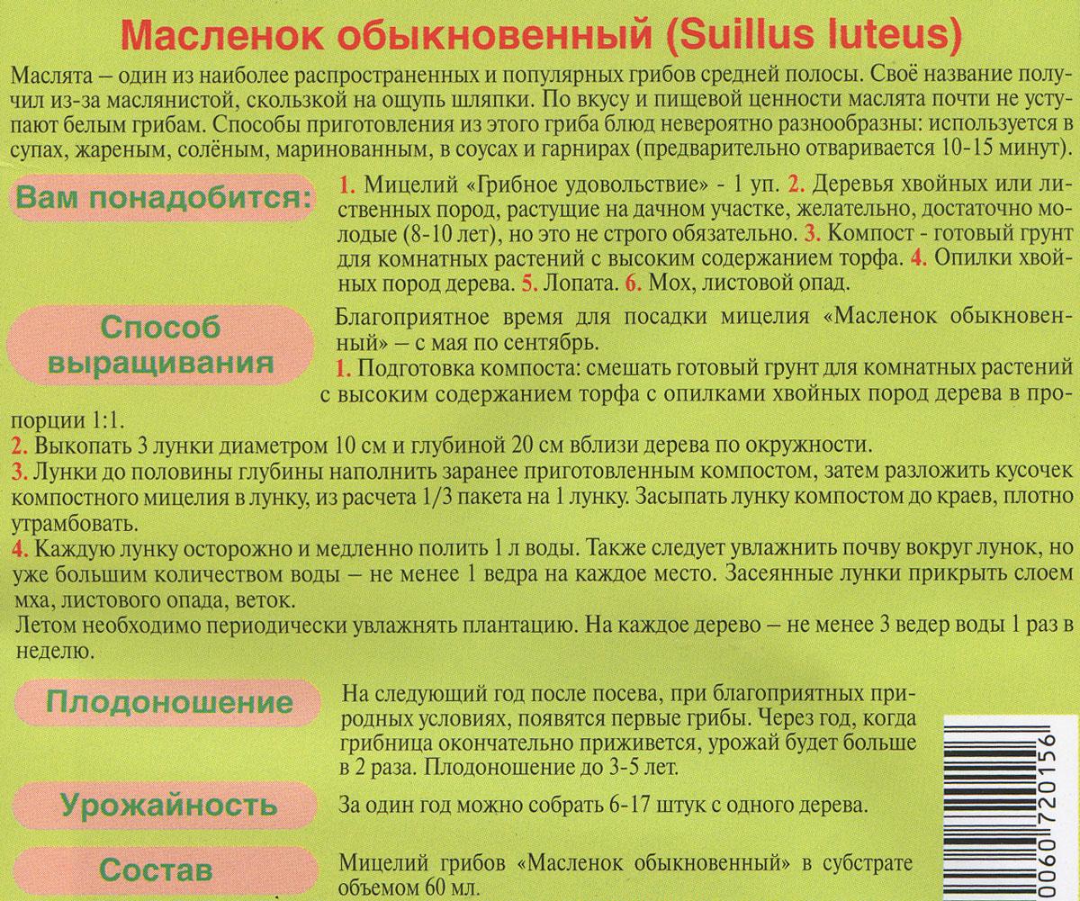 """Мицелий грибов """"Масленок обыкновенный"""", субстрат. Объем 60 мл"""