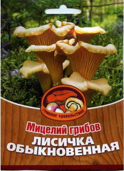 """Мицелий грибов """"Лисичка обыкновенная"""", субстрат, 60 мл"""