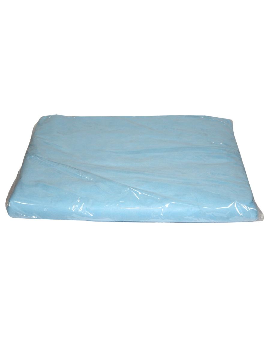 Простыня СМС голубой 200 х 80 см, 50 шт./уп. (Чистовье)
