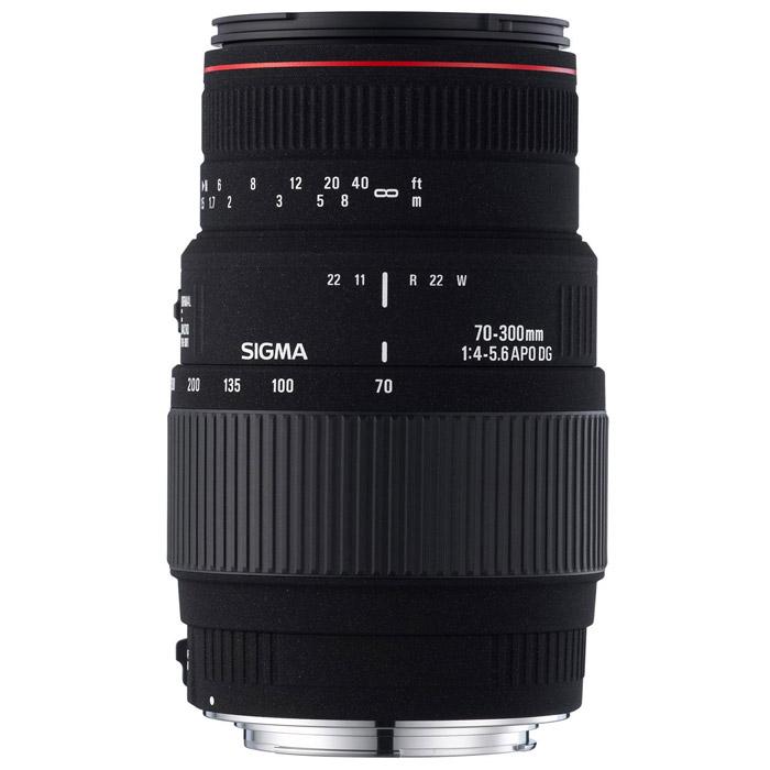 Sigma AF 70-300mm F4-5.6 APO MACRO DG, Sony