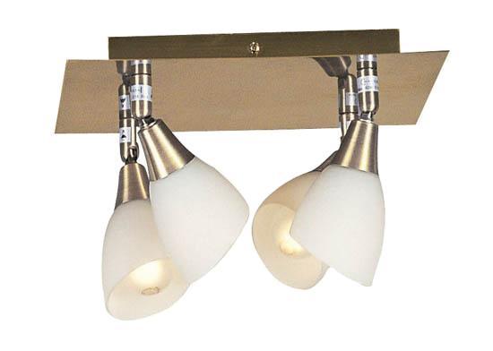Настенно-потолочный светильник GLOBO Frank 5451 45451-4