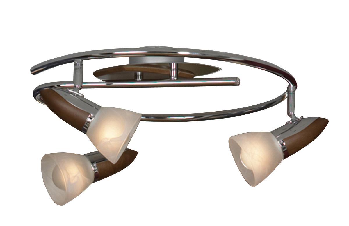 Настенно-потолочный светильник Lussole Cisterino LSQ-6401 03