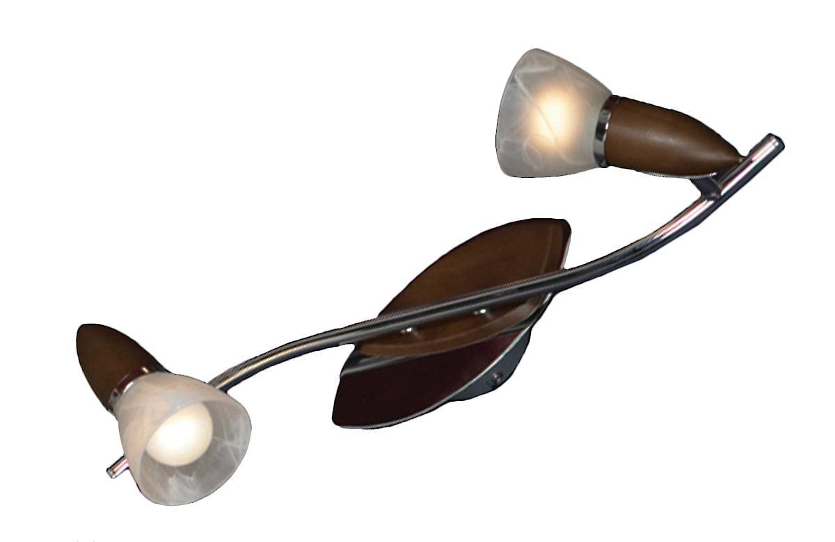 Настенно-потолочный светильник Lussole Cisterino LSQ-6401 02