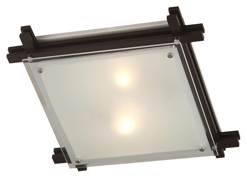 Настенно-потолочный светильник Globo Edison 48324-2