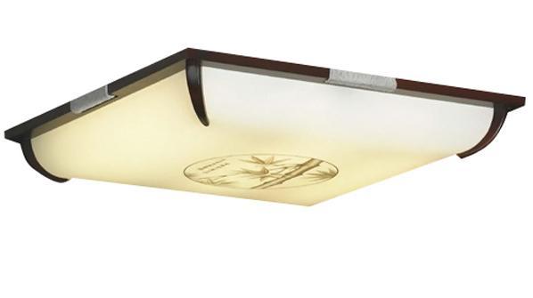Потолочный светильник Lussole Milis LSF-8022 03
