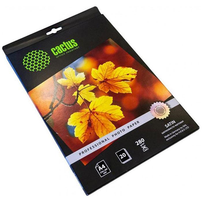 Cactus CS-SMA428020 Professional шелковисто-матовая фотобумага