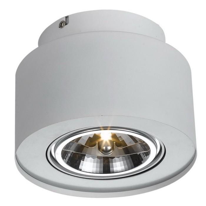 Светильник потолочный Arte Lamp CLIFF A5643PL-1WHA5643PL-1WH