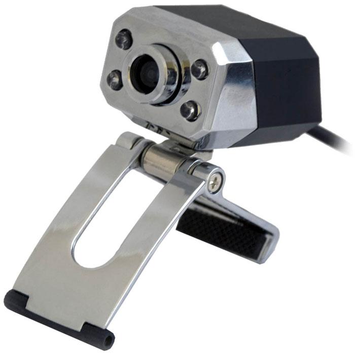 Ritmix RVC-047M Web-камера