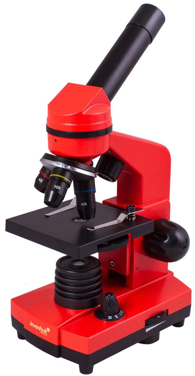Levenhuk Rainbow 2L, Orange микроскопXSP-1406 plastic Pantone #179CЧтобы учеба была эффективной, важно, чтобы она приносила удовольствие. Со школьным микроскопом Levenhuk Rainbow 2L занятия по биологии станут по-настоящему интересными, ведь самостоятельное исследование микромира гораздо увлекательнее, чем сухое изложение материала в учебнике. В комплект входит все необходимое для первых биологических опытов. Кроме того, благодаря стильному и яркому корпусу, микроскоп привлекает внимание - таким подарком приятно похвастаться перед одноклассниками. Качественная оптика: Все линзы микроскопа сделаны из специального оптического стекла, которое отличается высокой прозрачностью. Дополнительно на оптические поверхности нанесено многослойное просветляющее покрытие - оно повышает светопропускание оптики и улучшает качество изображения. Эта модель поставляется в комплекте с тремя объективами - микроскоп дает увеличение от 40 до 400 крат. Менять кратность очень просто - для этого нужно только повернуть револьверное устройство. ...