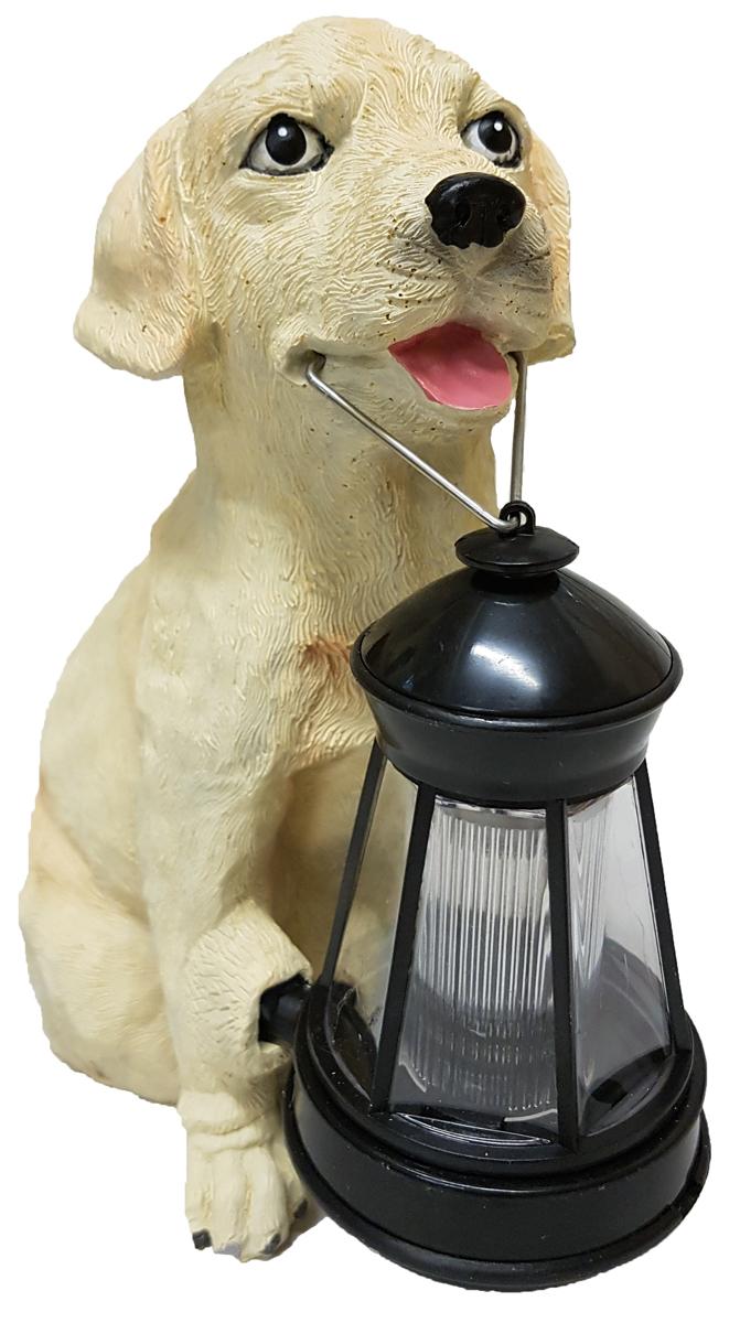 Декоративный светильник Счастливый дачник Лабрадор, на солнечной батарееHW-9041Декоративный светильник на солнечной батарее Счастливый дачник Лабрадор - простое и эффективное решение освещения и декора. Он выполнен в виде собаки породы лабрадор, которая держит в зубах небольшой фонарик. Светильник идеально подходит для украшения дачи, садового участка отдыха и других территорий. Также его можно использовать для выделения затемненных уголков участка, подсветки дорожек и для освещения ступенек. Данное устройство экологично и не наносит вреда окружающей среде, так как заряжается от солнечного света с помощью солнечной батареи и работает от встроенного Ni-Cd аккумулятора. Солнечный свет преобразуется в энергию, подзаряжая аккумулятор в течение дня, а при наступлении светильник автоматически включается. Материал: пластик, полистоун. Размер фигурки собаки: 25 см х 15 см х 20,5 см. Размер фонаря: 13,5 см х 7 см х 7 см.