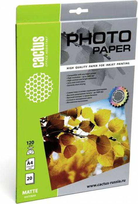 Cactus CS-MA412020 A4/120г/м2 матовая фотобумага для струйной печати (20 листов)CS-MA412020Фотобумага Cactus CS-MA412020 с матовым покрытием для струйной печати. Наслаждайтесь лучшими мгновениями вашей жизни в сочных и насыщенных цветах. Представляйте яркие и красочные презентации. Создавайте отпечатки высочайшего качества. Фотобумага Cactus совместима со струйными принтерами Hewlett Packard, Canon, Epson и другими марками. Высококлассное покрытие фотобумаги Cactus позволяет добиться максимально точной цветопередачи при печати фотографий и графики.
