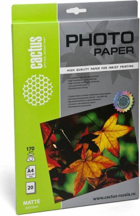 Cactus CS-MA417020 A4/170г/м2 матовая фотобумага для струйной печати (20 листов)CS-MA417020Фотобумага Cactus CS-MA417020 с матовым покрытием для струйной печати. Наслаждайтесь лучшими мгновениями вашей жизни в сочных и насыщенных цветах. Представляйте яркие и красочные презентации. Создавайте отпечатки высочайшего качества. Фотобумага Cactus совместима со струйными принтерами Hewlett Packard, Canon, Epson и другими марками. Высококлассное покрытие фотобумаги Cactus позволяет добиться максимально точной цветопередачи при печати фотографий и графики.