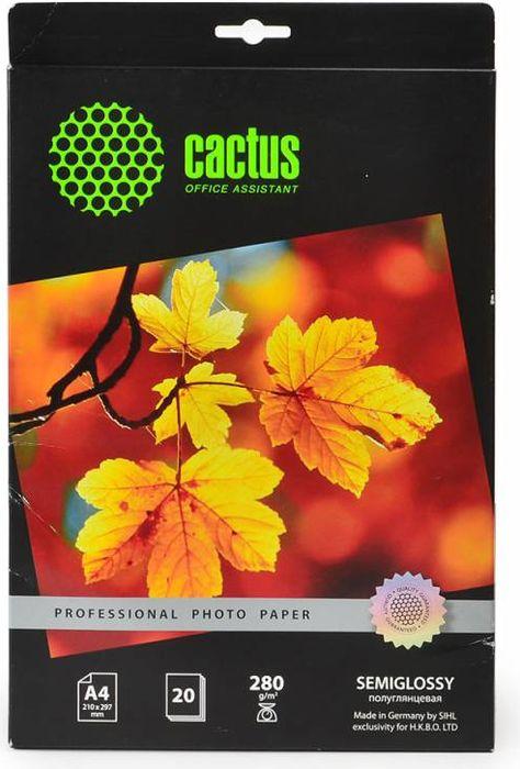 Cactus Prof CS-SGA428020 A4/280г/м2 полуглянцевая фотобумага для струйной печати (20 листов)CS-SGA428020Полуглянцевая фотобумага Cactus Prof CS-SGA428020 для струйной печати. Превратите ваши фотографии в произведения искусства и сохраните их в первозданном виде на многие годы. Фотобумага серии Cactus Professional незаменима для печати цифровых фотографий с максимальным разрешением. Высококлассное покрытие и современная полимерная основа фотобумаги Cactus Professional гарантируют максимально точную цветопередачу. Совместима со струйными принтерами Hewlett Packard, Canon, Epson и другими марками. Рекомендуется для профессионального использования в фотостудиях, дизайнерских и художественных бюро.