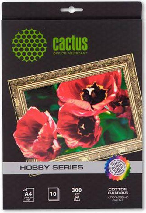 Cactus CS-СA426010 A4/300г/м2 холст для струйной печати (10 листов)