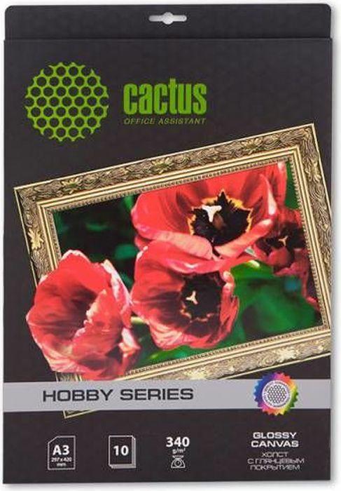 Cactus CS-СGA32601 A3/340г/м2 глянцевый хлопковый холст для струйной печати (10 листов)