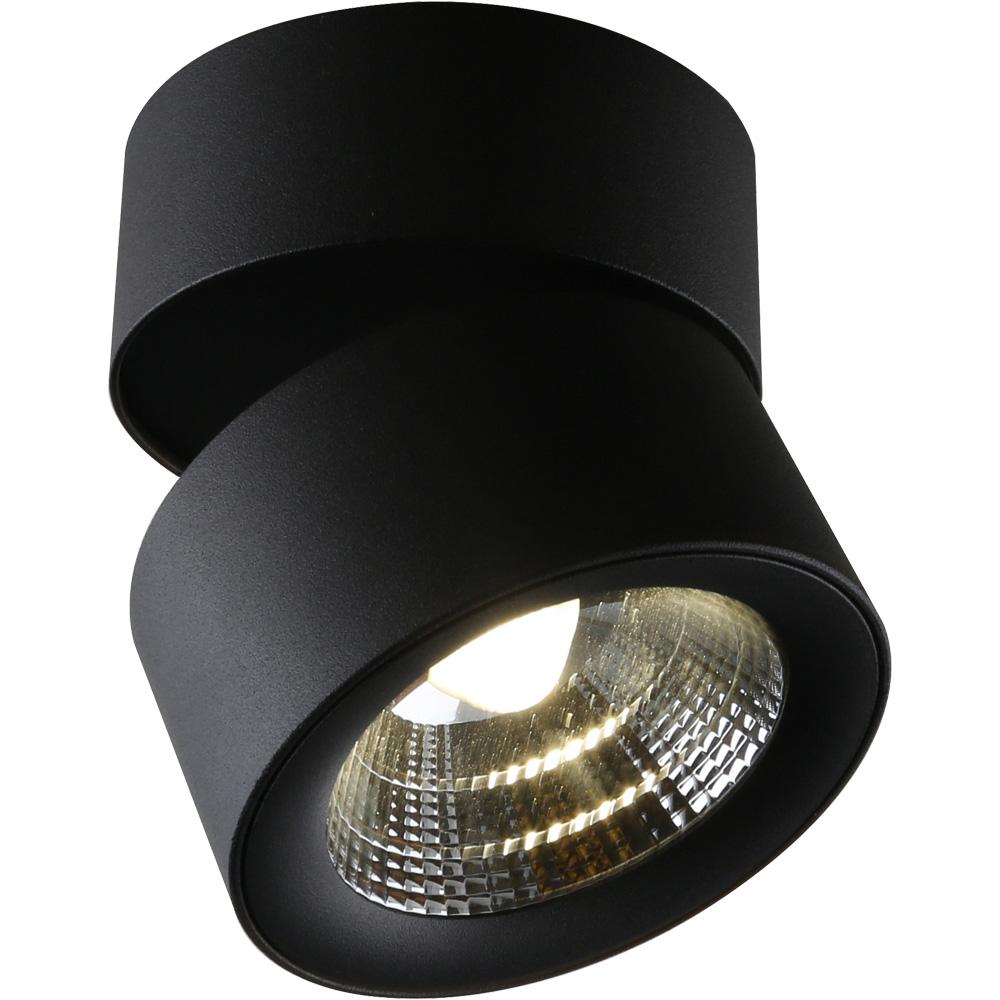 Светильник потолочный Divinare Urchin 1295/04 PL-11295/04 PL-1