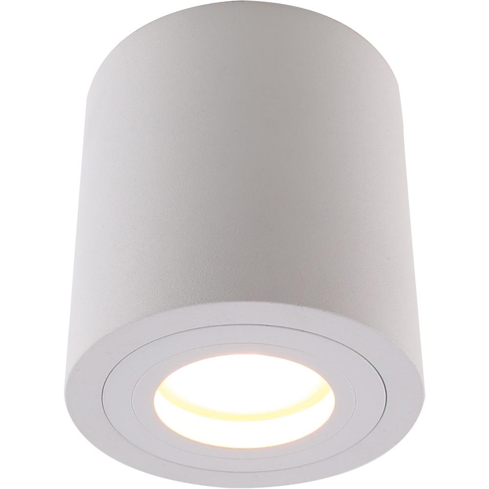 Светильник потолочный поворотный Divinare Galopin 1460/03 PL-11460/03 PL-1