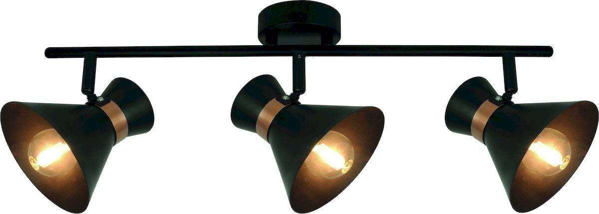 Светильник потолочный Arte Lamp BALTIMORE A1406PL-3BKA1406PL-3BK