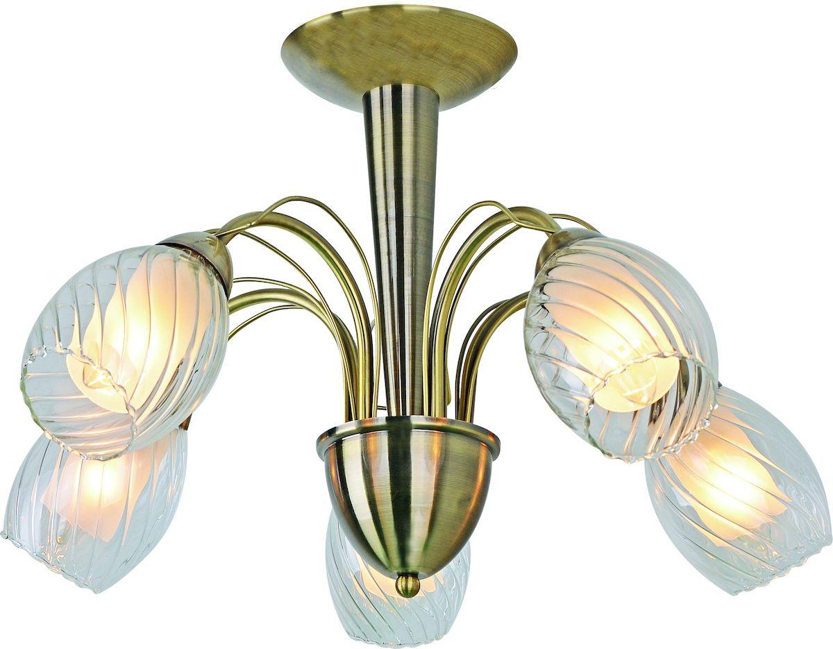 Светильник потолочный Arte Lamp TEMPESTA A1673PL-5ABA1673PL-5AB