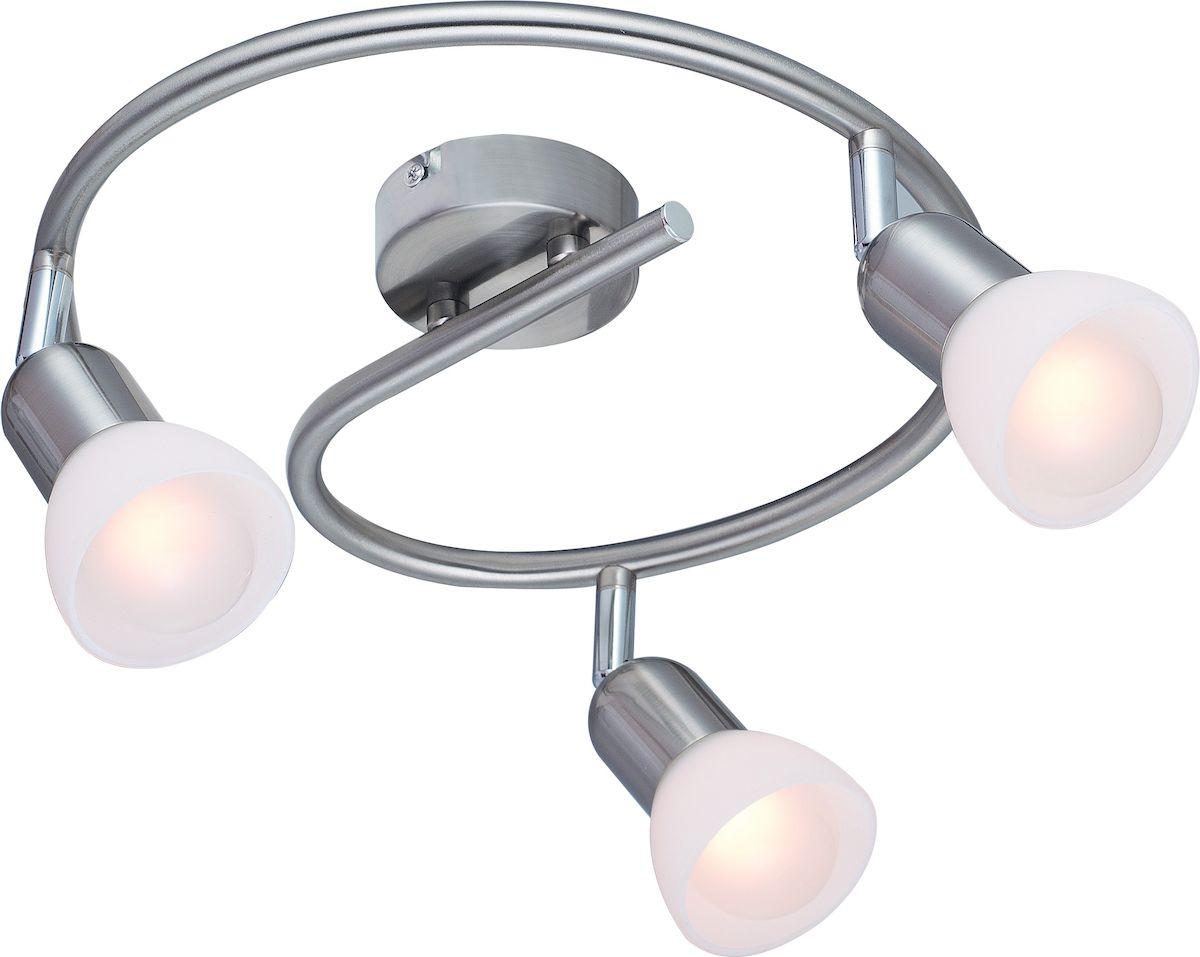 Светильник потолочный Arte Lamp FALENA A3115PL-3SSA3115PL-3SS