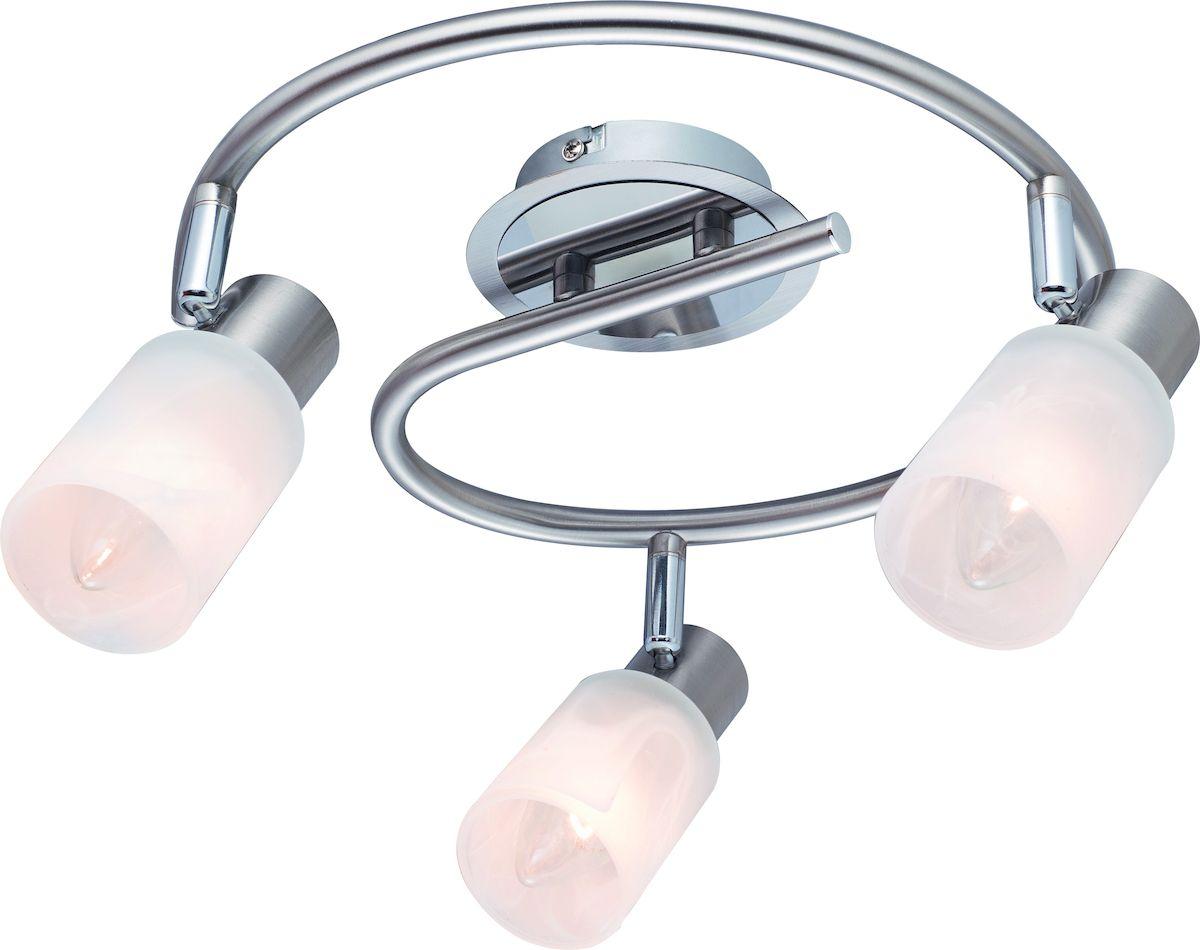 Светильник потолочный Arte Lamp CAVALLETTA A4510PL-3SSA4510PL-3SS