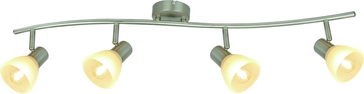 Светильник потолочный Arte Lamp Parry A5062PL-4SSA5062PL-4SS
