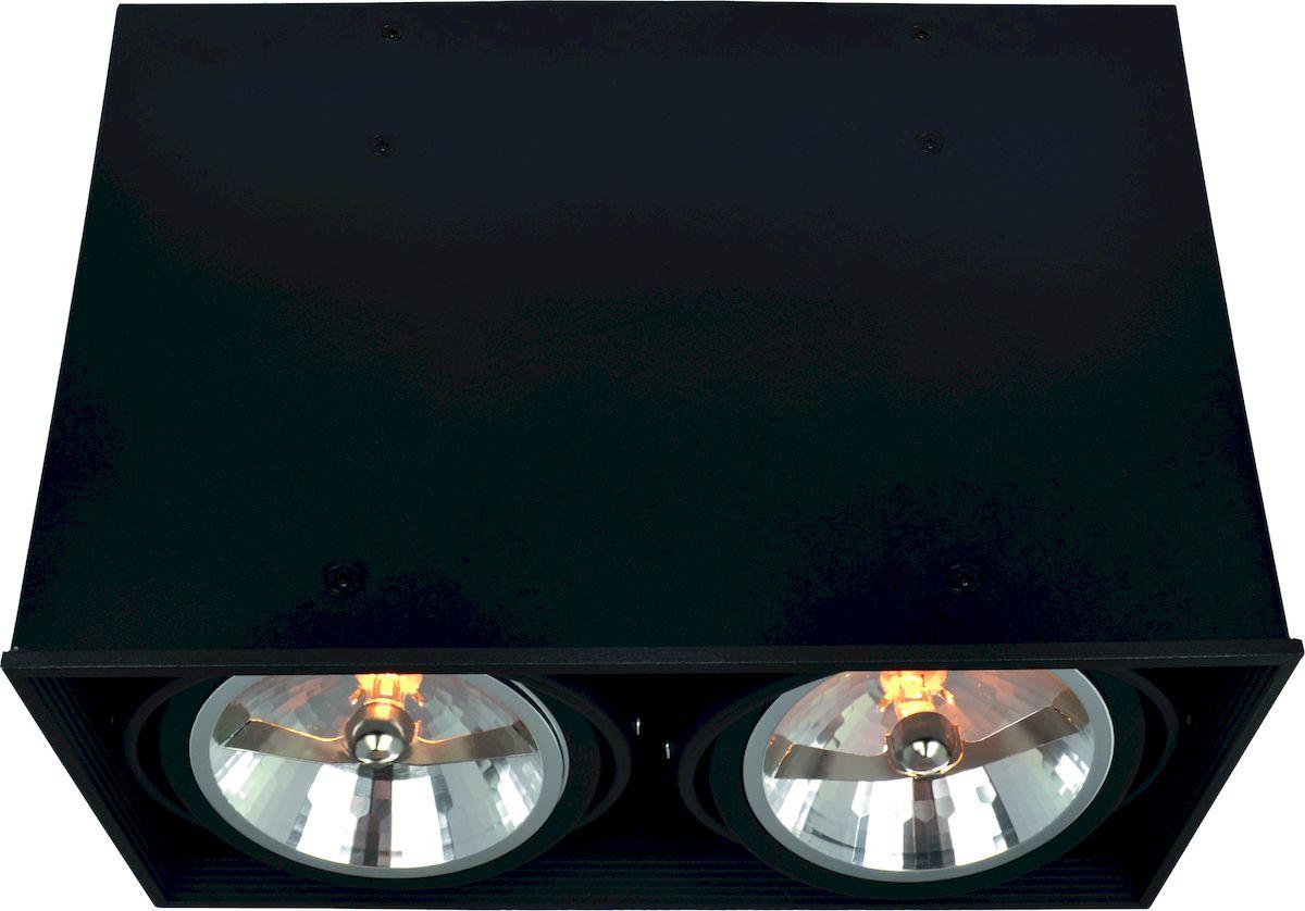 Светильник потолочный Arte Lamp CARDANI A5936PL-2BKA5936PL-2BK
