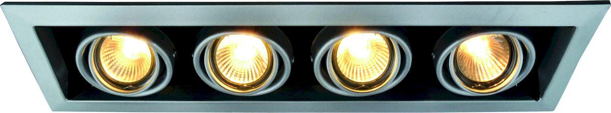 Светильник потолочный Arte Lamp CARDANI A5941PL-4SIA5941PL-4SI