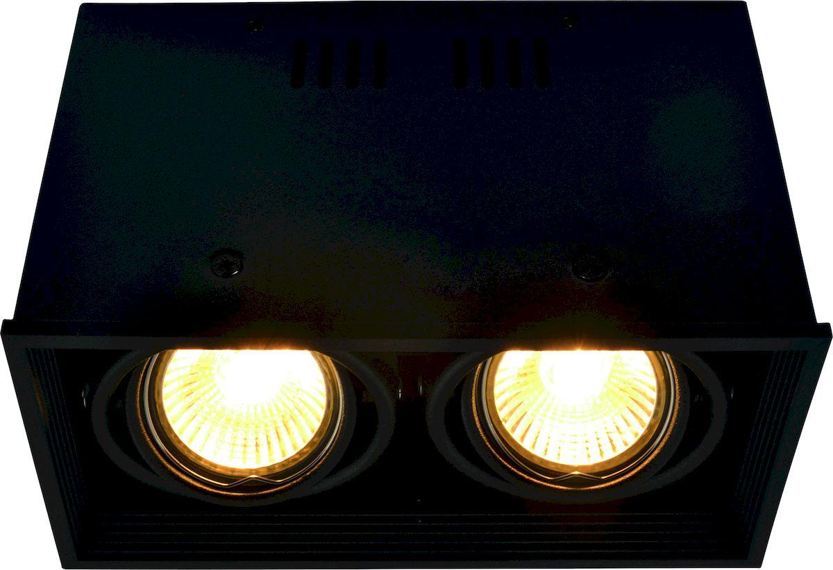 Светильник потолочный Arte Lamp CARDANI A5942PL-2BKA5942PL-2BK