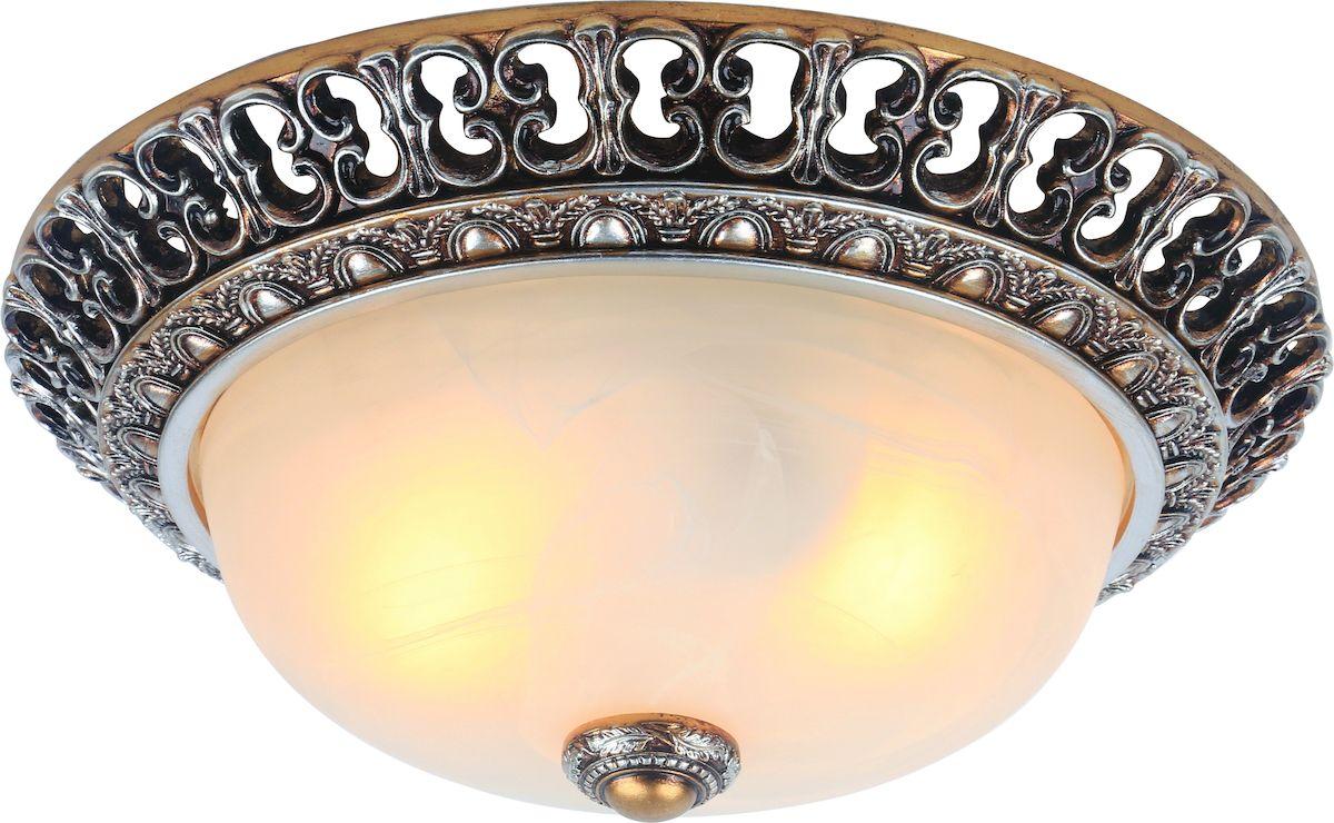 Светильник настенно-потолочный Arte Lamp Torta A7131PL-2SAA7131PL-2SA
