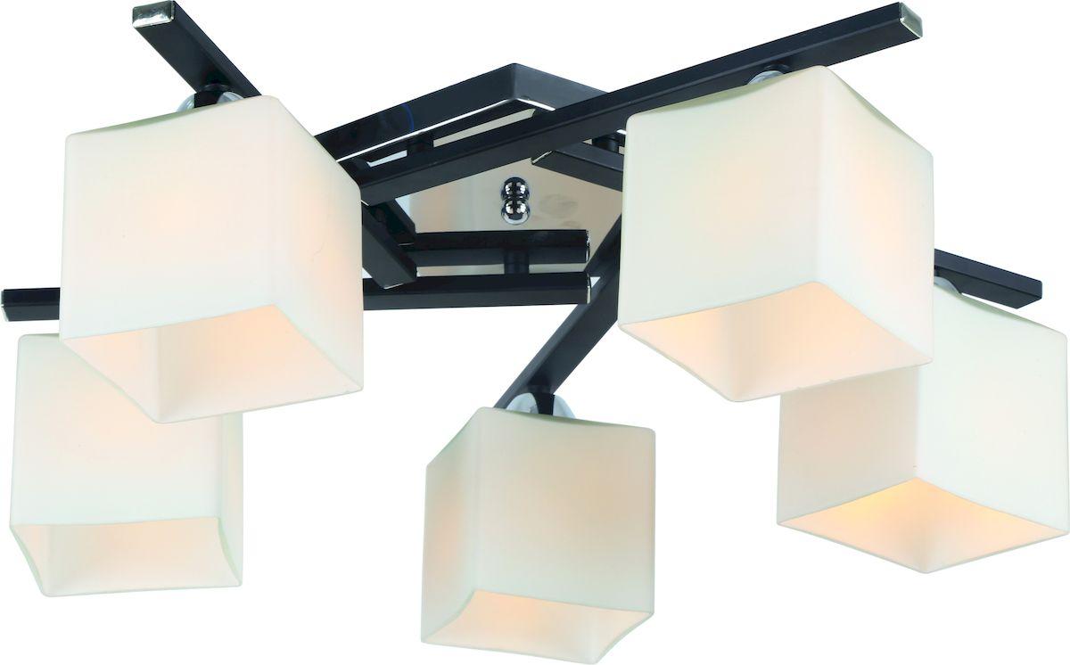 Светильник потолочный Arte Lamp VISUALE A8165PL-5BKA8165PL-5BK