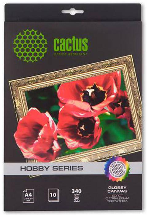 Cactus CS-СGA426010 A4/340г/м2 глянцевый хлопковый холст для струйной печати (10 листов)CS-CGA426010Хлопковый холст Cactus CS-СGA426010 с глянцевым покрытием для струйной печати. Арт-бумага Cactus позволит вам воплотить самые смелые идеи и вдохновенные идеи для творчества и бизнеса. Специальное тиснение превратит в произведение искусства даже обычный текст и станет изысканным штрихом, дополняющим фирменный стиль и имидж ваших отпечатков. Совместима со струйными принтерами Hewlett-Packard, Canon, Epson и другими марками.