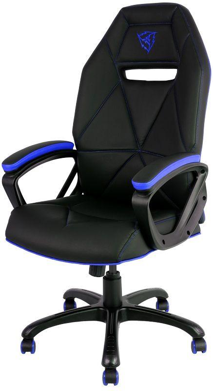 ThunderX3 TX3-10, Black Blue профессиональное геймерское креслоTX3-10BBПрочная металлическая основа. Мягкий кожзам. Тип механизма бабочка. Пневматическая регулировка высоты сиденья. Угол раскачивания 3° - 18°. 50 мм нейлоновые колесики.