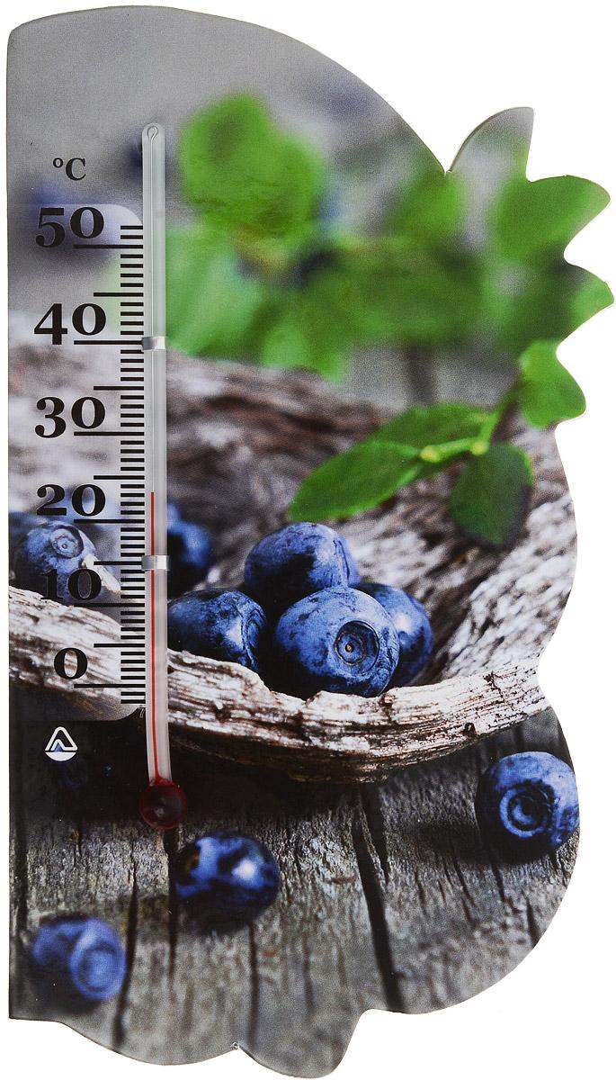 Термометр комнатный Стеклоприбор Сувенир. Фрукты, на магните. 300074_черника300074_черникаЖидкостный термометр Стеклоприбор Сувенир. Фрукты выполнен в декоративном корпусе из картона. С помощью магнитного крепления такой термометр можно повесить на холодильник. Термометр имеет шкалы измерения температуры по Цельсию (от -2°С до +52°С). Благодаря такому термометру вы всегда будете точно знать, насколько тепло в помещении. Жидкостный термометр Стеклоприбор Сувенир. Фрукты отлично впишется в интерьер вашей кухни, а также станет отличным сувенирным подарком для ваших родных и близких. Размеры термометра: 14,5 х 8 см.