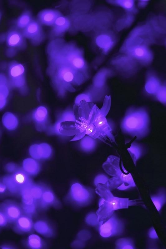 """Светодиодное дерево Neon-Night """"Сакура"""", цвет: фиолетовый, диаметр кроны 130 см, высота 150 см"""