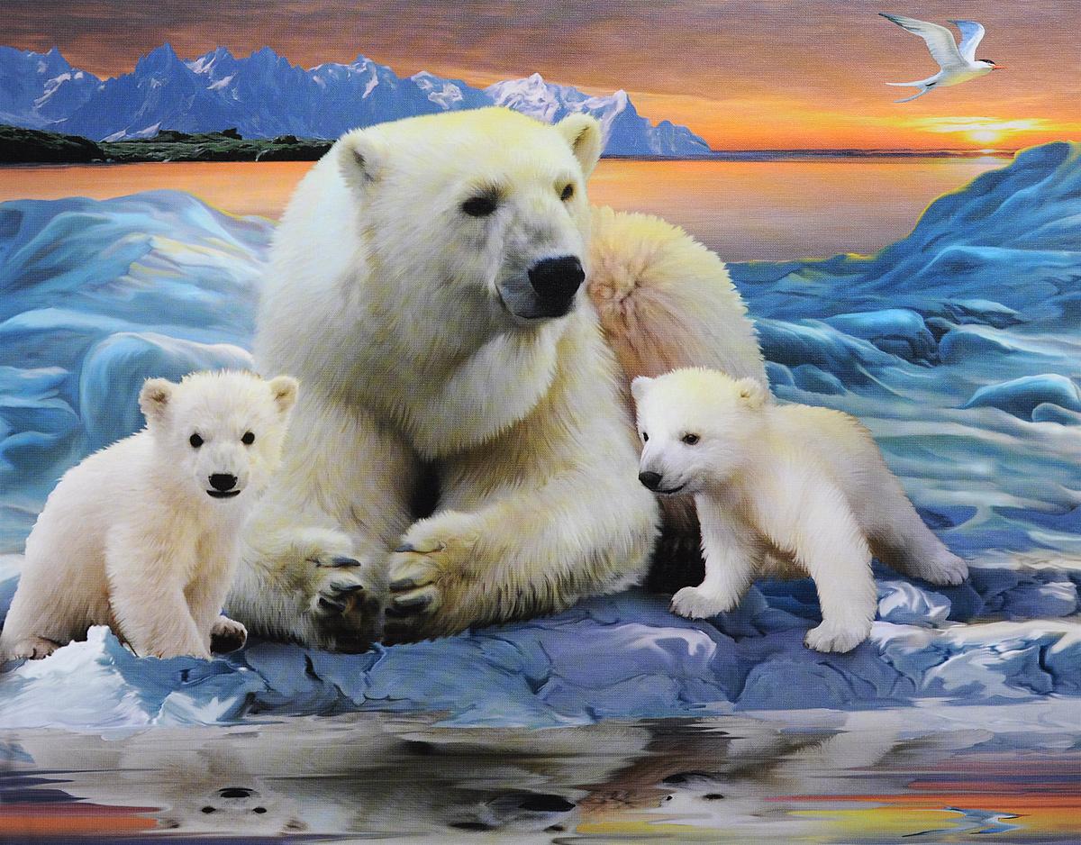 белый медведь для детей видео развивающее