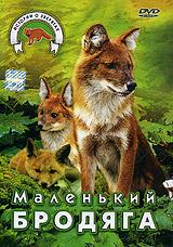 Маленький бродяга 2005 DVD