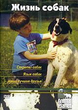 Animal Planet. Жизнь собак: Секреты собак. Язык собак. Наши лучшие друзьяСобака - одно из древнейших домашних животных. Благодаря неприхотливости, выносливости, способности быстро передвигаться, острому чутью, тонкому слуху, исключительной привязанности к человеку, собака стала для него преданным другом и помощником. Она прекрасно зарекомендовала себя в служебно-розыскной работе, как спасатель в горах, и как незаменимый поводырь слепых. Сейчас в мире насчитывается более 400 пород собак. У вас есть уникальная возможность узнать все о жизни четвероногих любимцев и еще раз убедиться, что собака - лучший друг человека.