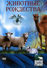 Animal Planet. Животные Рождества