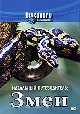 Discovery: Идеальный путеводитель. Змеи