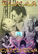 Дикая орхидеяГрета Гарбо (Дама с камелиями), Льюис Стоун (Крупная ставка), Нилс Эстер в романтической мелодраме Сидни Франклина Дикая орхидея. 12 октября 1928 года из Сан-Франциско на борту океанского лайнера Суматра отправляются в путешествие Лили (Грета Гарбо) и Джон Стерлинг (Льюис Стоун). Это путешествие должно было стать для них вторым медовым месяцем, но знакомство и неожиданно возникшая дружба между Джоном и принцем Де Гэйсом (Нилс Эстер) едва не разрушили семью. Все случилось из-за того, что коварный Де Гэйс, влюбившийся в Лилли, пригласил чету пожить у него на острове Ява, пообещав Джону, что там он сможет осуществить свою мечту - поохотиться на тигра... Трагичный, но вместе с тем оптимистичный фильм, который раскрывает историю настоящей любви в экстремальных условиях.